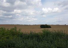 Landschaft Klützer Winkel